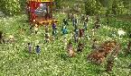 Uploaded by: ButternutofCH on 2011-06-18 23:27:56